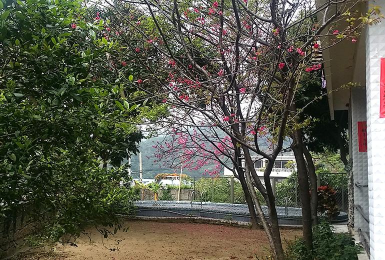 臺北市私立全家老人長期照顧中心(養護型)-戶外環境