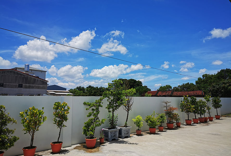 臺南市私立藤龍老人長期照顧中心戶外環境