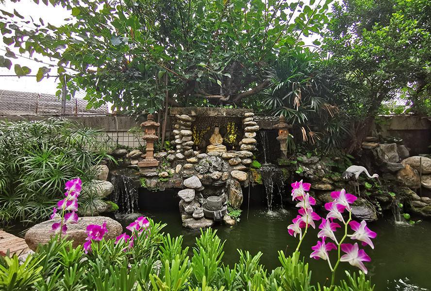 崧鶴園-觀音白鶴景觀池